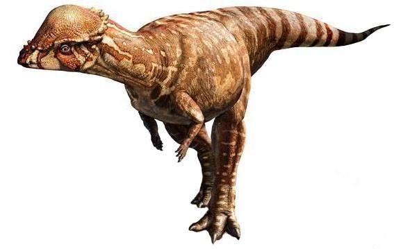 Was ist das für ein Dinosaurier?
