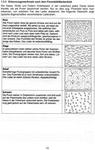 Erkennungsmerkmale - (Leder, Poren, erkennung)