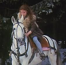 Pferd - (Pferde, Zaumzeug)