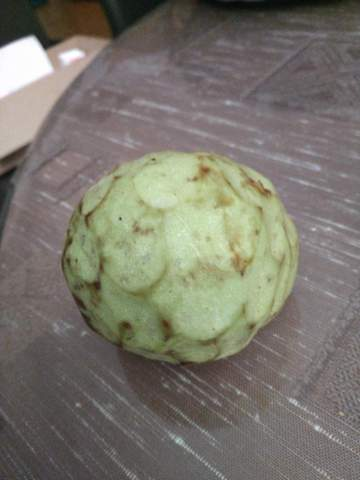 Was ist das für eine Frucht (aus Marokko)?