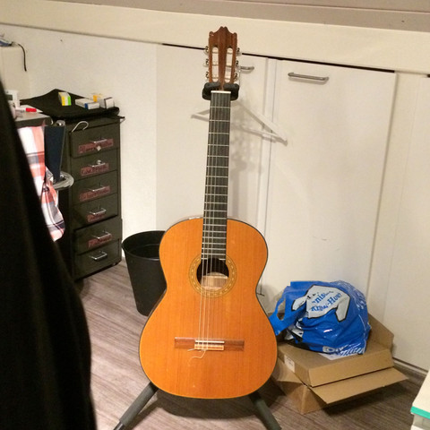 Was ist das für eine Gitarre (Ibanez)?
