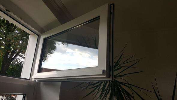 Leiste am Fenster - (Fenster, Leiste, Fliegengitter)