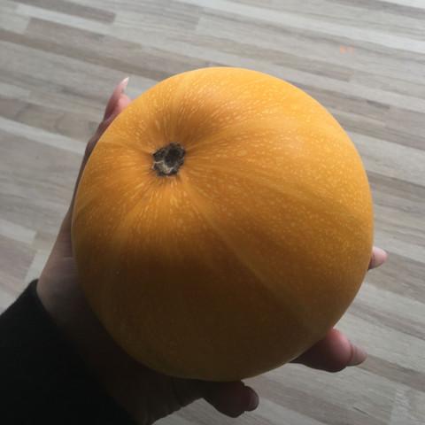 Hahaha - (Obst, Gemüse, Früchte)