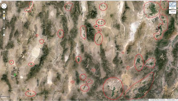 Kreise in der Wüste - (Amerika, Natur, Umwelt)
