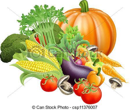 Vielleicht fallen Euch noch andere Gemüsesorten ein .. - (essen, Biologie, Kochen)