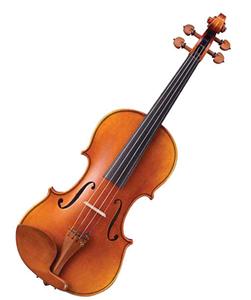 Geige Violine Unterschied