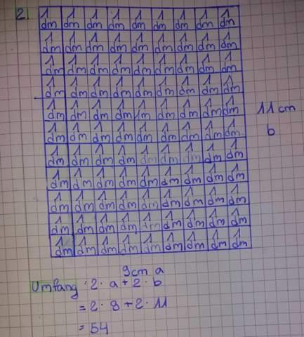 - (Schule, Mathe, Flächeninhalt)