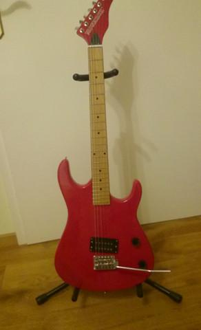 Die ganze E-gitarre  - (Musik, Gitarre, E-Gitarre)