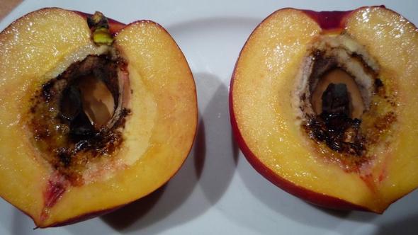 Nektarinenkern - (Ernährung, Obst, Kerne)
