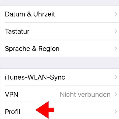 Allgemein - (Apple, Einstellungen, Profil)