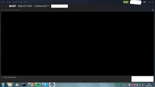 So sieht das aus  - (Steam, lädt nicht, Profil lädt nicht)
