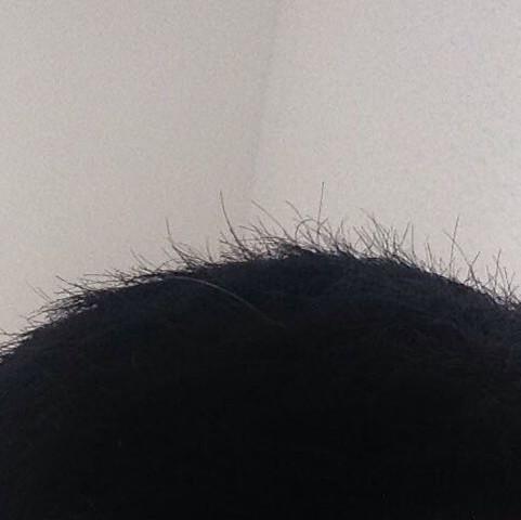 - (Haare, Shampoo, Haarpflege)