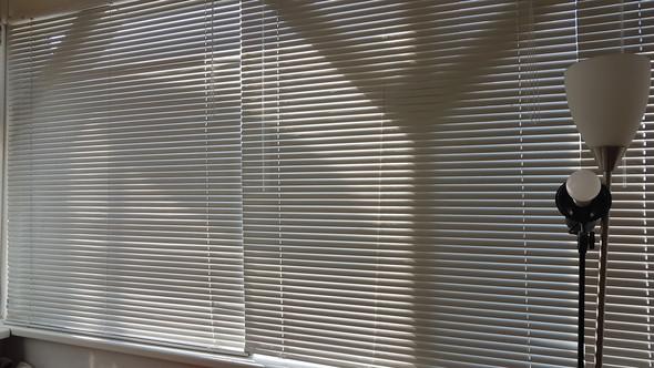 Was kann ich gegen diese Hitze in meinem Zimmer, welches nur aus Fenstern besteht, denn nur tun?