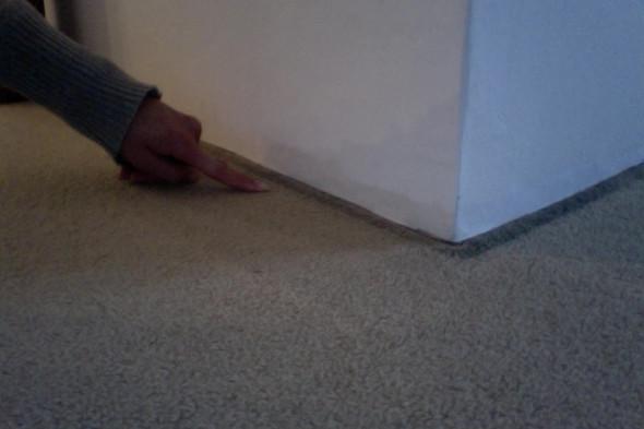 Fußboden Aus Estrich ~ Was kann ich gegen mäuse zwischen dem estrich und dem fußboden tun