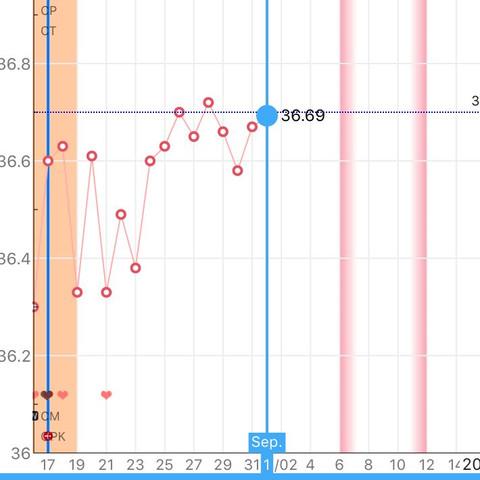 Meine Kurve - (schwanger, basaltemperatur)