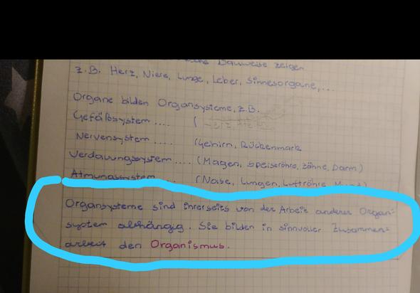 - (Biologie, Zellen)