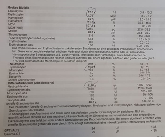 Was sagen diese Blutwerte aus?