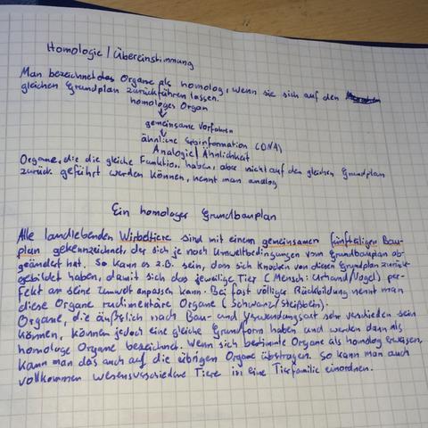 Der Bio-Aufsatz - (Handschrift, Graphologie, Kleine Handschrift)