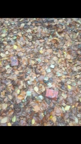 Was sind das für Behälter (Im Wald gefunden)?
