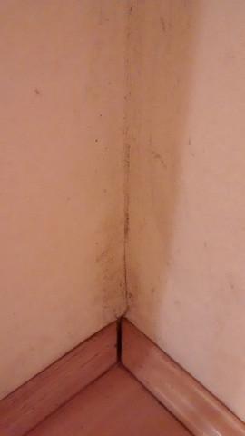 Wand Flecken 4 - (Flecken, Wand)