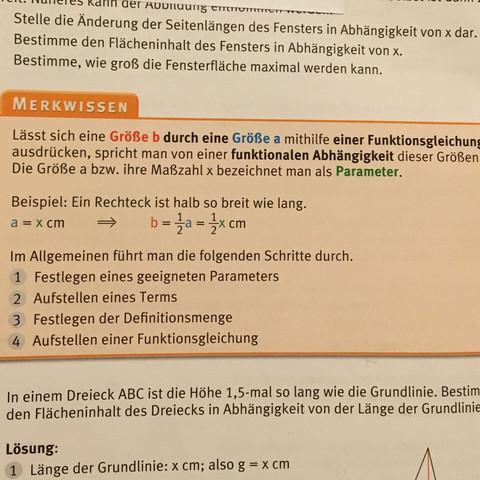So wird es in unserem Buch beschrieben  - (Mathe, Funktionsgleichungen)