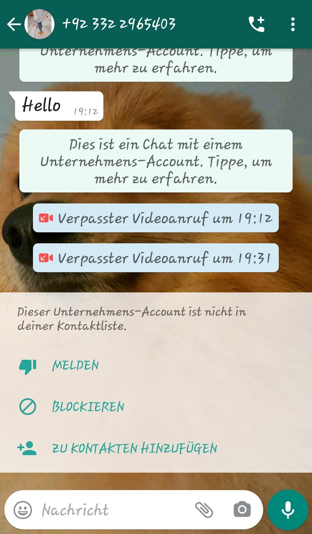 Blockierliste löschen whatsapp safemoon crypto