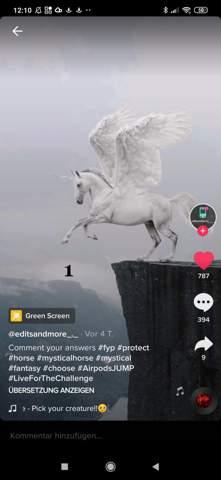 Was strahlen die Pferde aus?