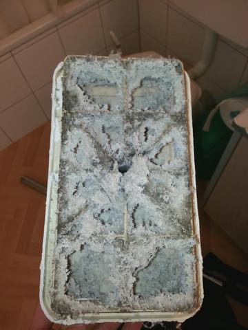 badezimmer luftung, was tun bei schimmel mit einer köllner lüftung? (badezimmer), Design ideen
