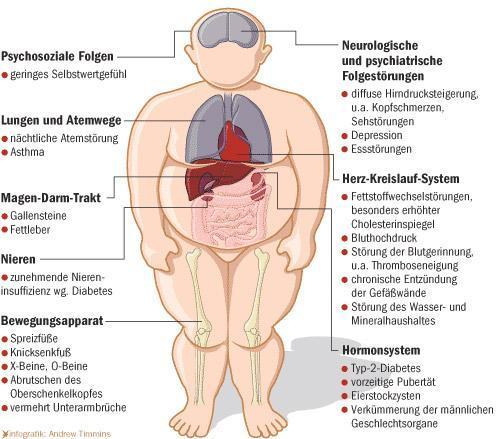 steroide und anabolika das gleiche