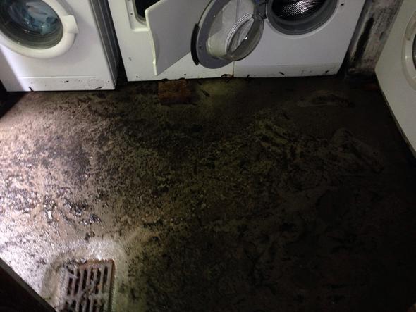 Gut bekannt Waschmaschine kaputt wegen Überschwämung. Wer bezahlt? (Haushalt NE93