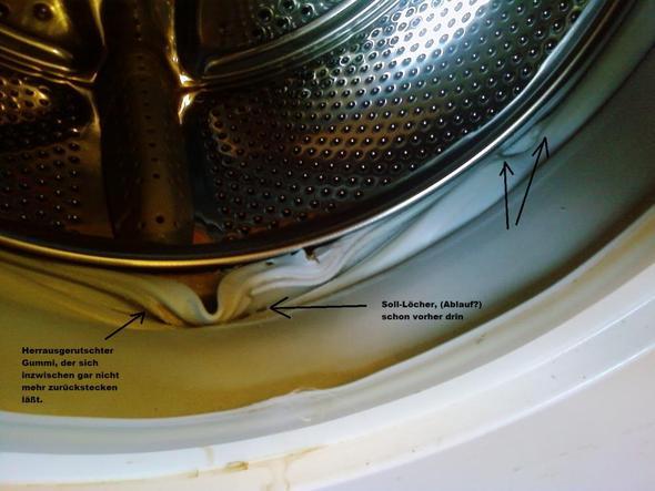 waschmaschine dichtung