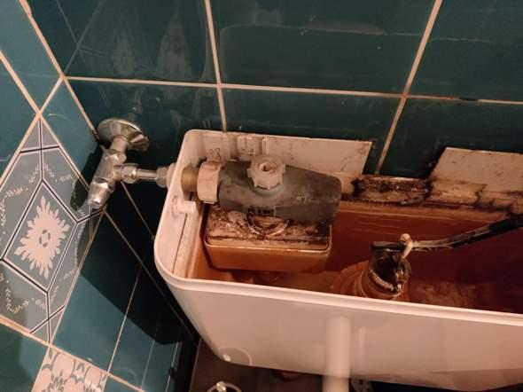 Wasserhahn beim Spülkasten der Toilette zudrehen?