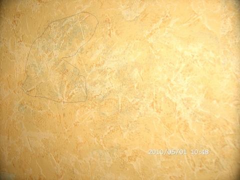 wasserschaden bei der dusche wand schimmelt handwerker maler. Black Bedroom Furniture Sets. Home Design Ideas
