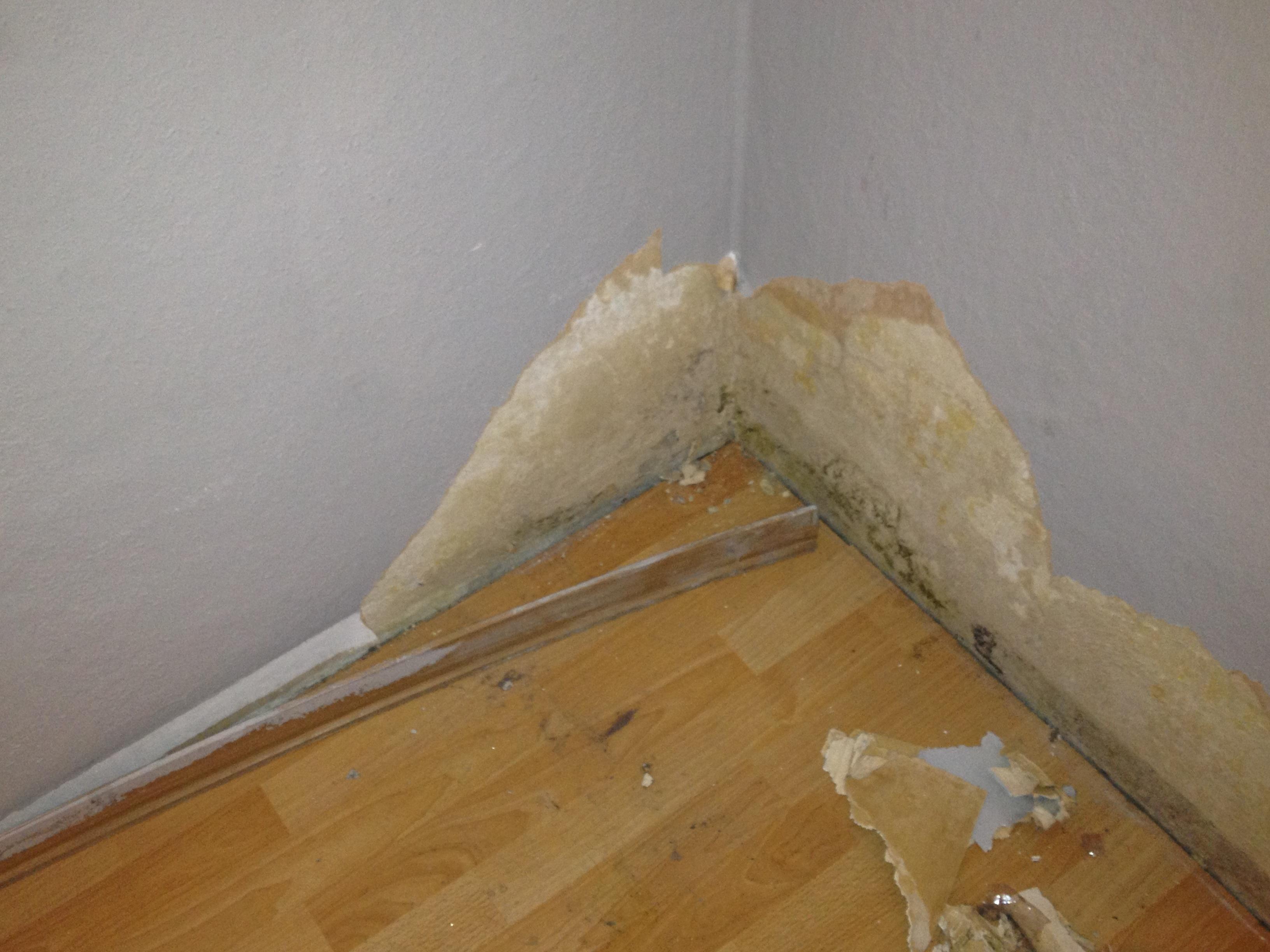 wasserschaden rat bitte recht wohnung versicherung. Black Bedroom Furniture Sets. Home Design Ideas