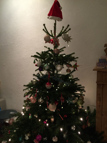 Weihnachtsbaum: Wer hat gute Tipps, wie man seinen Tannenbaum mit möglichst wenig Nadel-Chaos aus dem Wohnzimmer entsorgt?