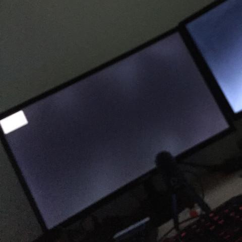 Der Monitor  - (Computer, PC, Gaming)