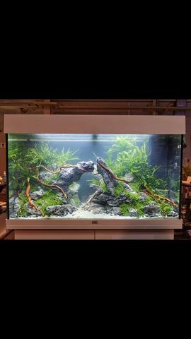 Weiß einer wo man die Aquarium Steine kaufen kann?