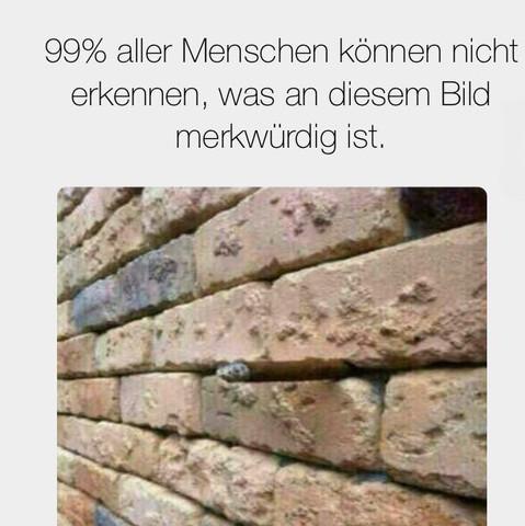 http://trucchipc.com/lol/de/ - (Rätsel, Mauer)