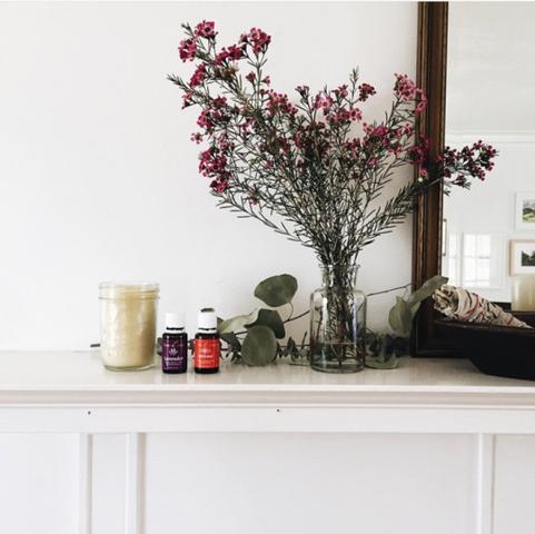 Bild - (Pflanzen, Blumen, Blüten)