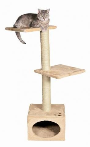 wei jmd wo man g nstig kratzb ume kaufen kann freizeit tiere katze. Black Bedroom Furniture Sets. Home Design Ideas