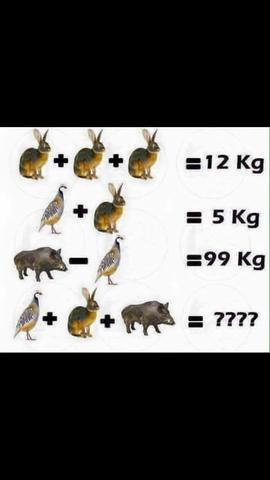 welche Lösung ist richtig  - (Mathe, Mathematik)