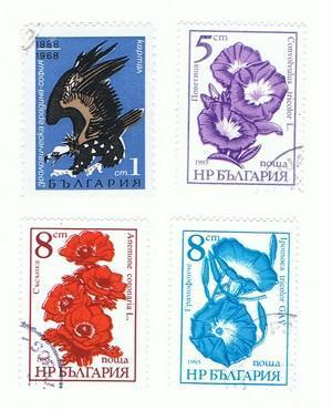 Unbekannte Briefmarke(n) 11 - (Briefmarken, Sammler)