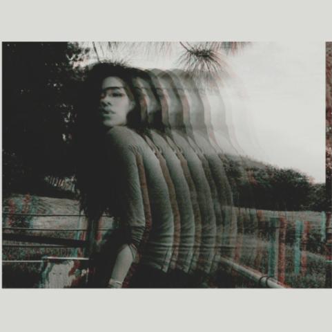 aus Instagram - (Programm, Bilder, App)