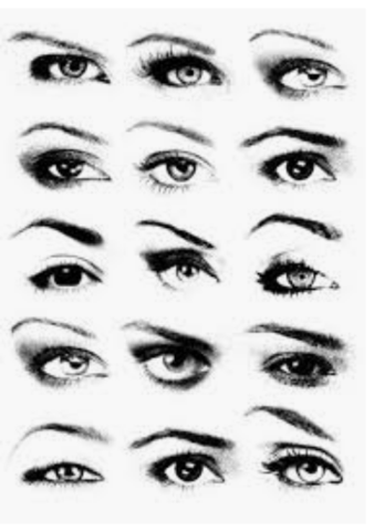 - (Beauty, Schönheit, Augenbrauen)