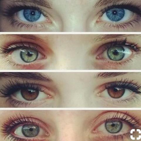🌸🌸🌸 - (Augen, Farbe, Ästhetik)