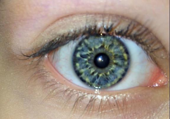 Bild - (Augenfarbe, blau grün)