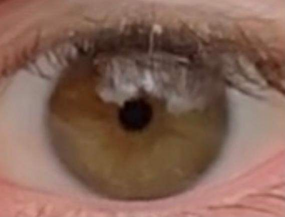 Which eye color do I have?