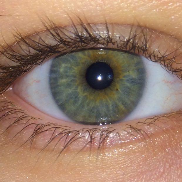 Augenfarbe Grün Braun