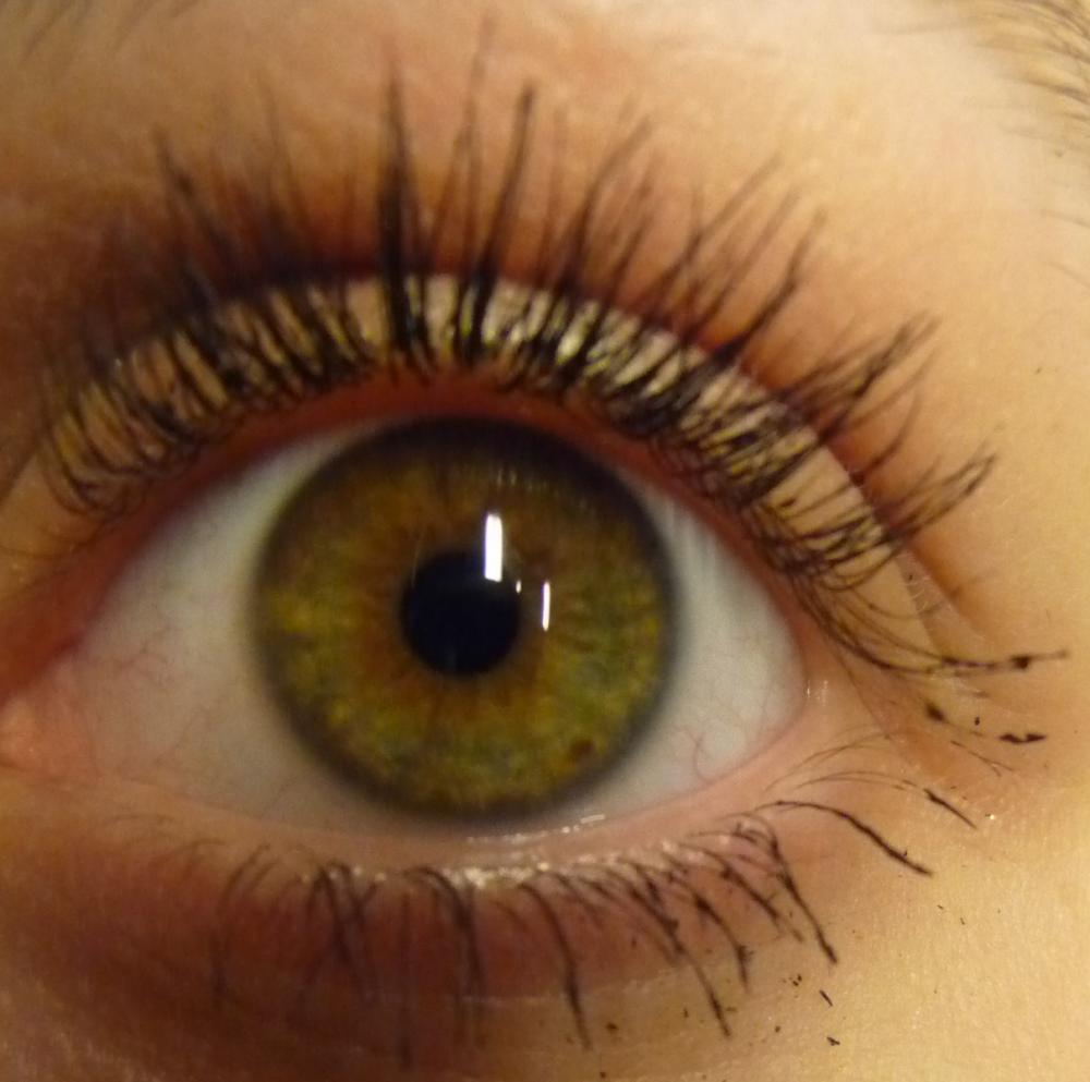 Augenfarbe Bestimmen