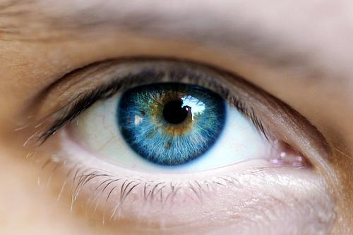 Welche Augenfarbe Passt Am Besten Zu Der Haarfarbe Haare Buch